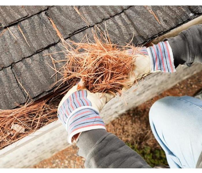 A person with gloves on cleaning leaves and pine needles out of a gutter.