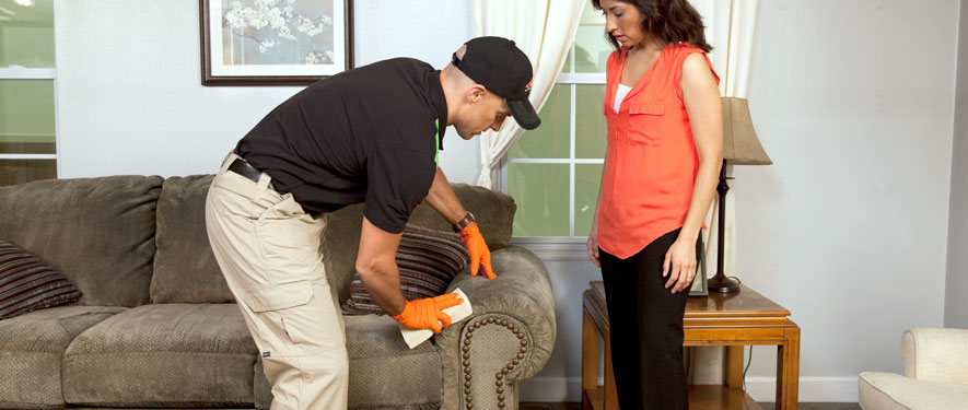 Ridley Park, PA carpet upholstery cleaning
