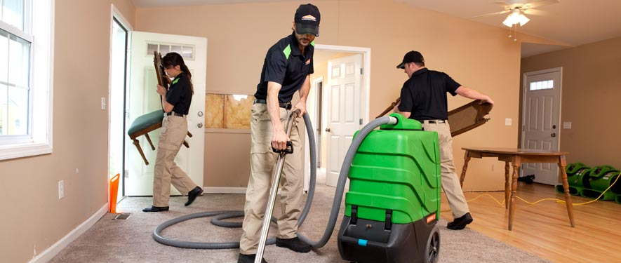 Ridley Park, PA cleaning services