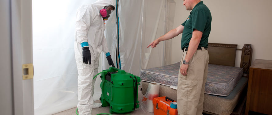 Ridley Park, PA mold removal process